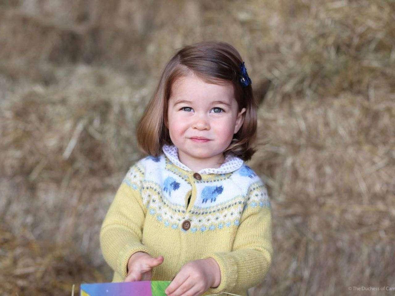 Принцесса Шарлотта Кембриджская — биография очаровательной малышки 2015 года