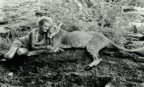 Джой Адамсон — всемирно известная защитница диких животных